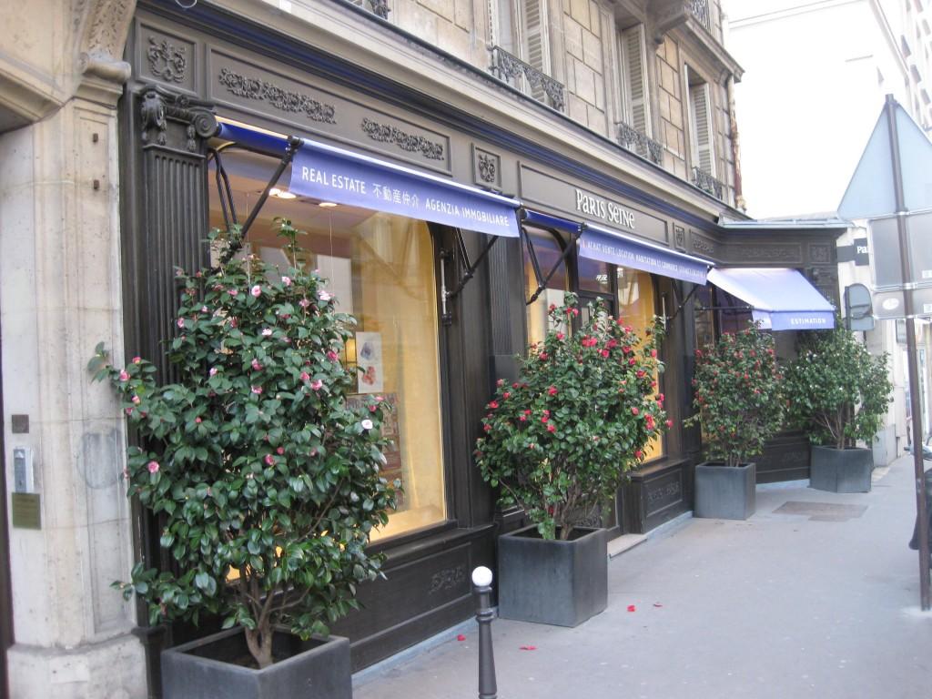 paris-seine-immobilier-image-2